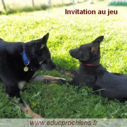 Invitation au jeu