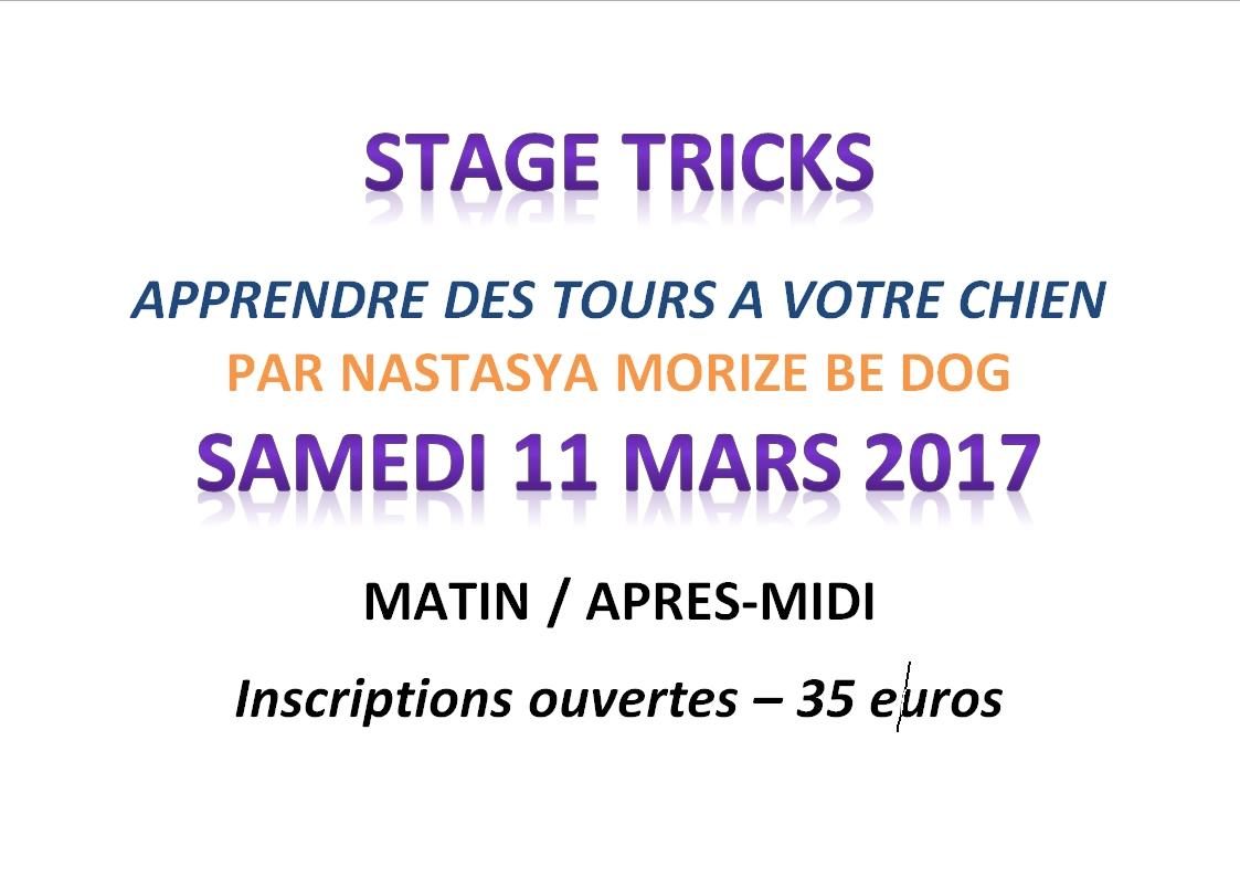 Stage tricks image