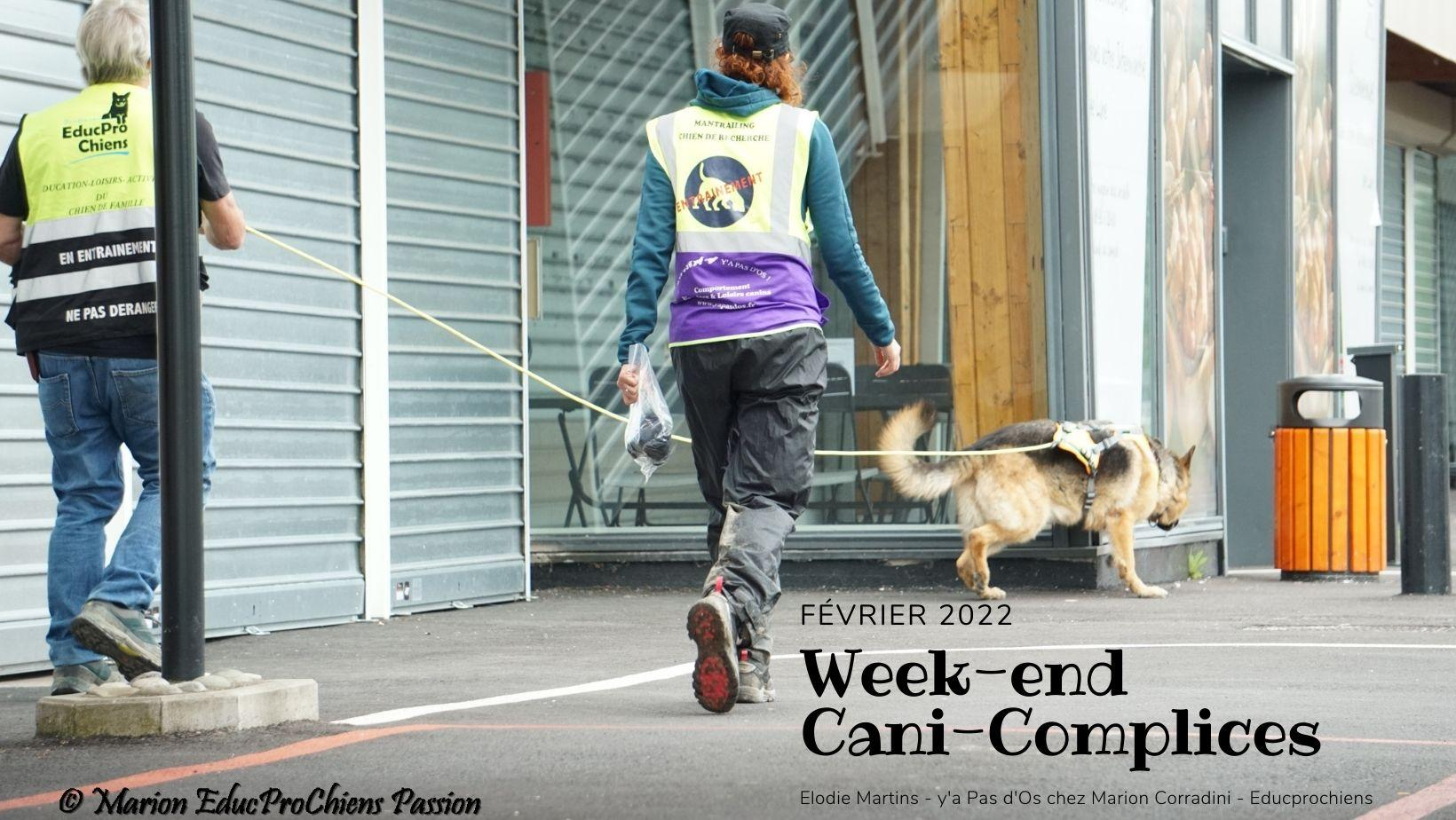 Week end cani complices